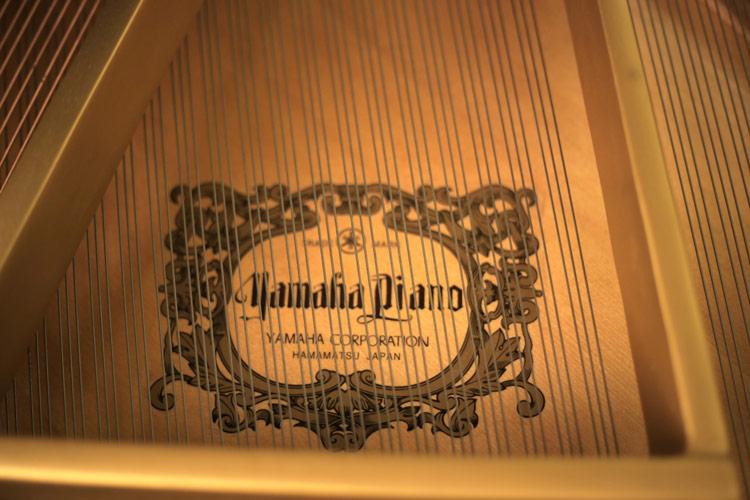 Registrazione audio e video di pianoforte solista per concorsi o demo